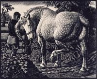 Artist Charles Frederick Tunnicliffe R.A.: The Percheron, 1940
